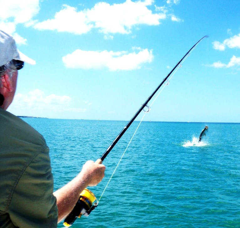 Tarpon-Fishing-Jumping.jpg
